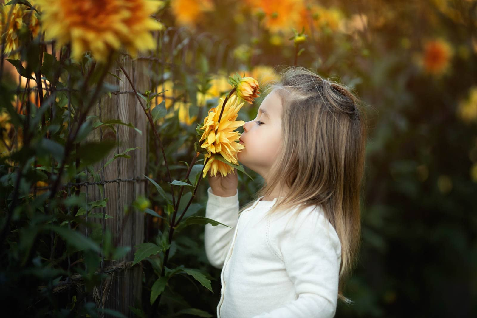 little girl smells a yellow flower during her fall family photo session in harrisburg pa